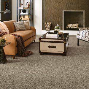 Living room Carpet floor | West River Carpets