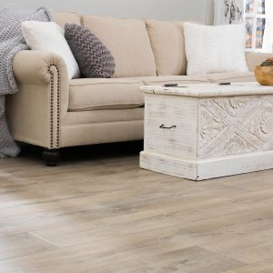 Sofa on Laminate floor | West River Carpets
