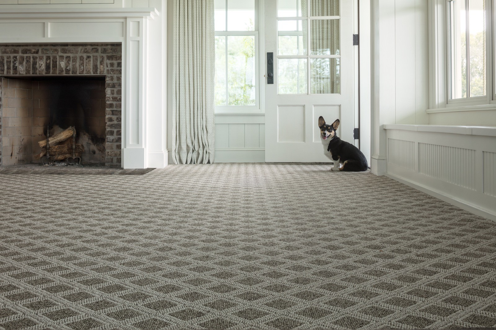 Dog sitting near door | West River Carpets