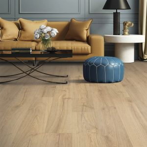 Sofa on Laminate flooring | West River Carpets
